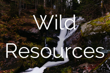 WildResources