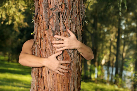 Tree Huggers are Healthier! The health benefits of tree hugging
