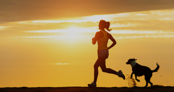 Wild Body Lessons Learned: When Running is Flying