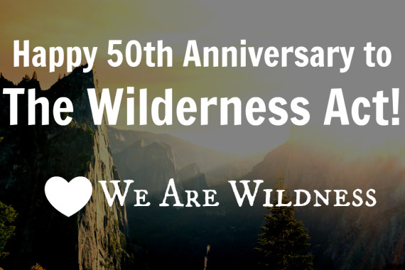 CELEBRATING 50 YEARS OF THE WILDERNESS ACT