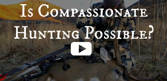 Is Compassionate Hunting Possible? (Controversial Video)