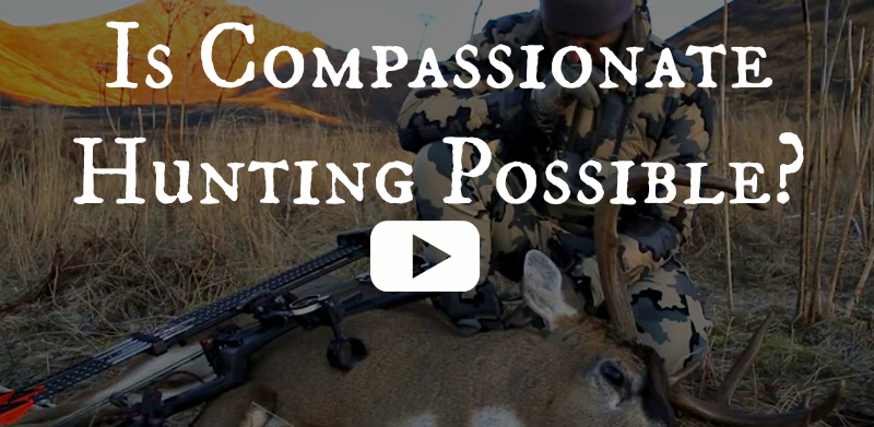 who we are hunters blog we are wildness rewilding compassionate hunting