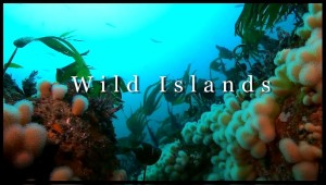 wildislands2