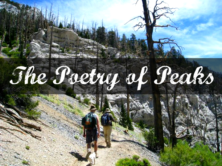 Bill huggins the poetry of peaks we are wildness rewild