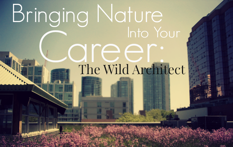 Bringing Nature Into Your Career The Wild Architect We Are Wildness Blog