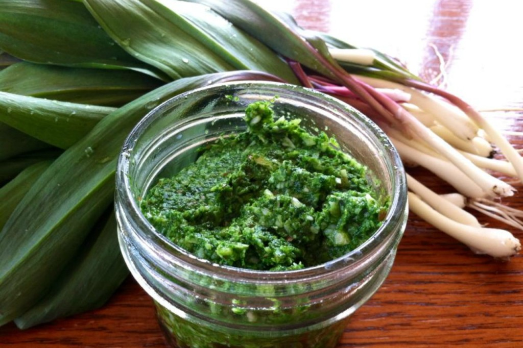 Ramps and Chickweed pesto