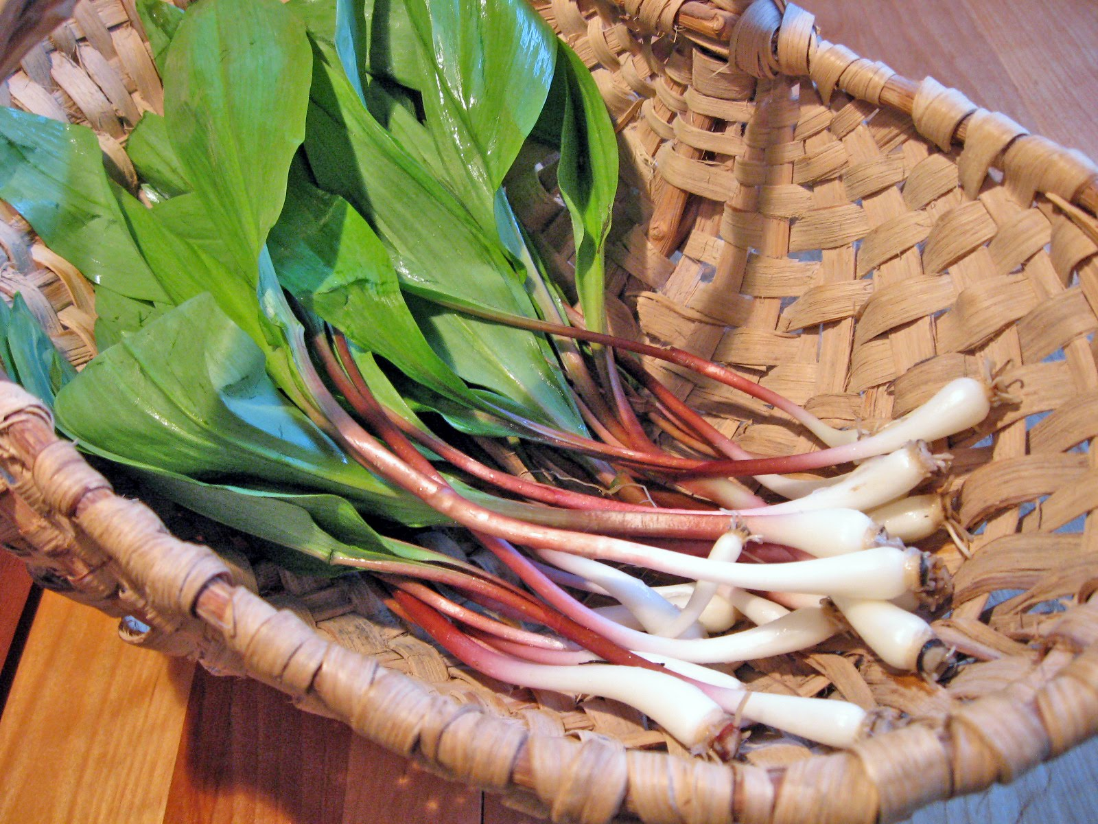 Ramps, or wild leeks.