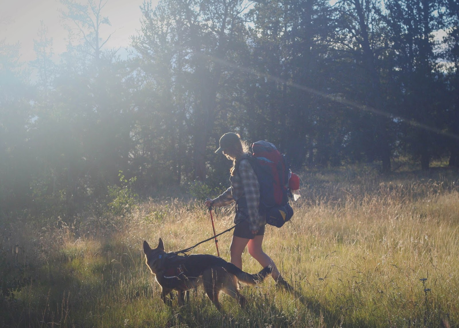 dailyn lewis adventure lifestyle hacks hiking trevor photo