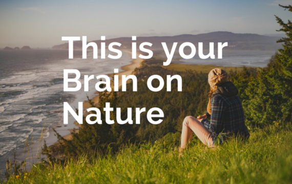 This Is Your Brain On Nature