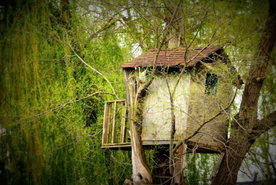 Build Your Own Eco-Friendly Treehouse