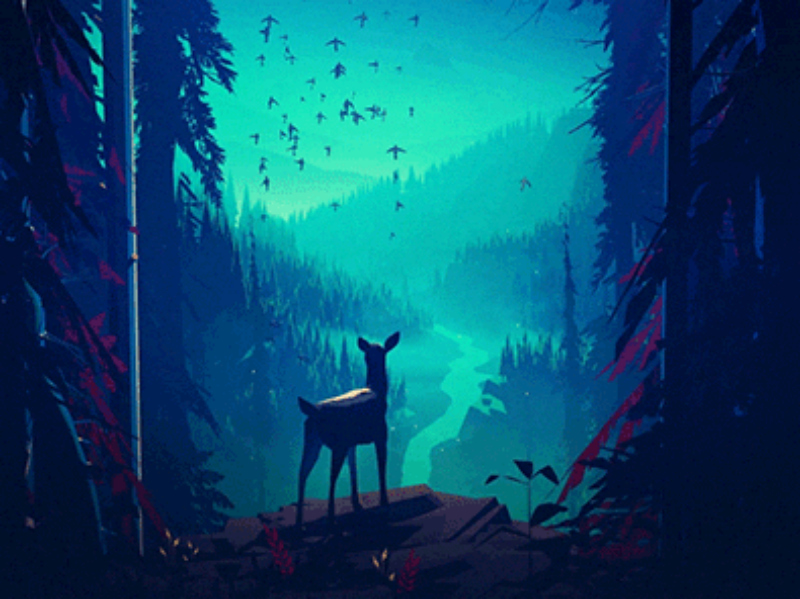 You Will Love These Beautiful Animated Nature GIFs by Mikael Gustafsson