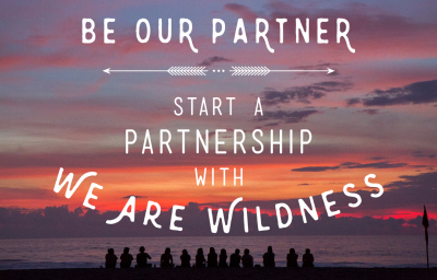 Partner with We Are Wildness