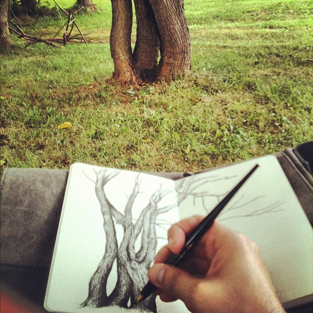 Wild Art:  Finding the Sacred in Sketching