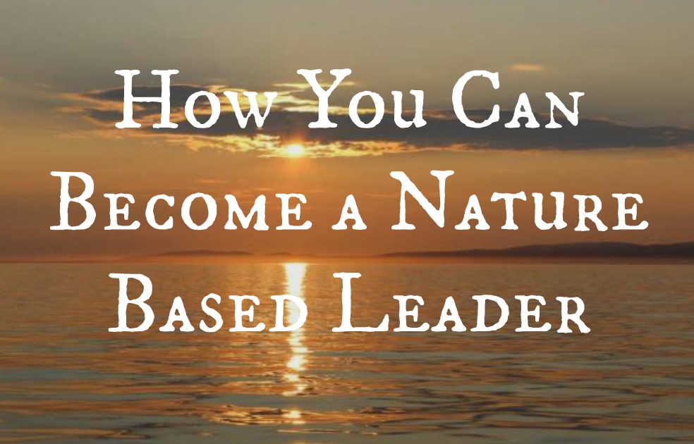 how you can become a nature based leader we are wildness
