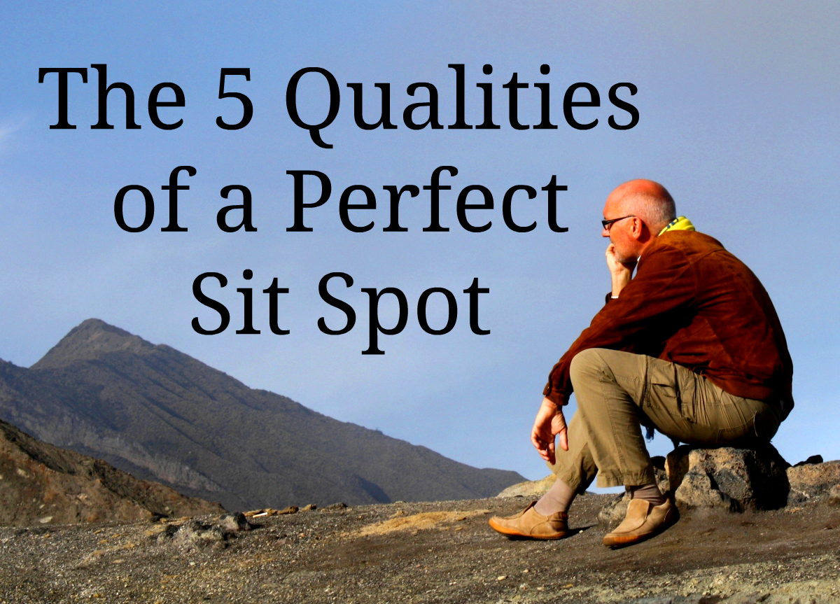 The 5 Qualities of a Perfect Sit Spot