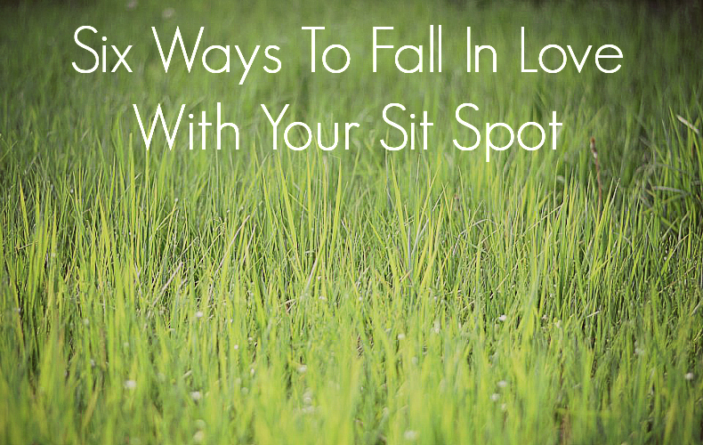 Six Ways to Fall in Love with sit spot - We Are Wildness