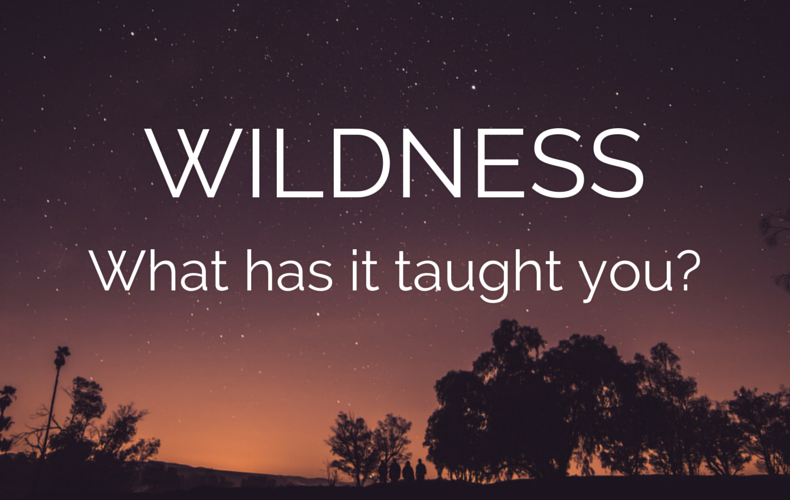 Wildness: What Has It Taught You?