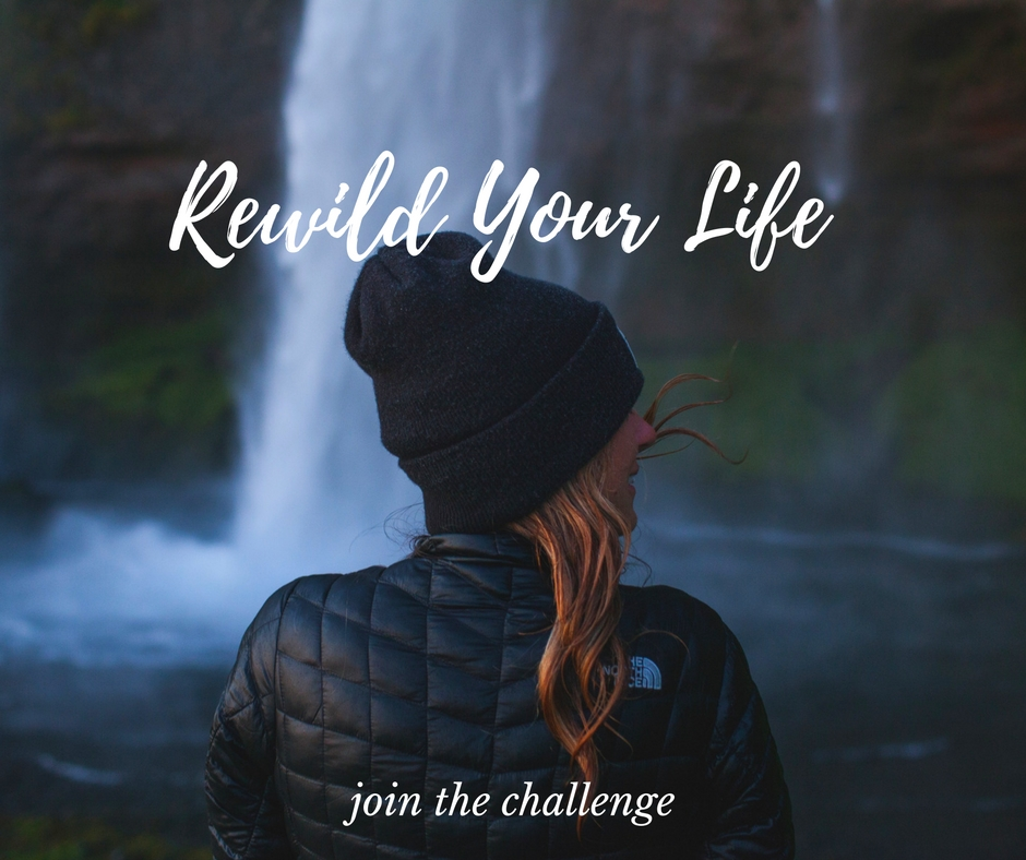 rewild-your-life-join-now-blog