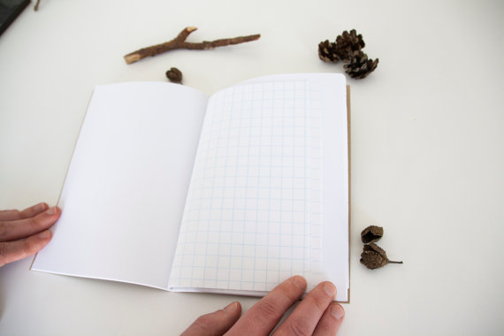 6 Reasons Why You Should Keep a Nature Journal