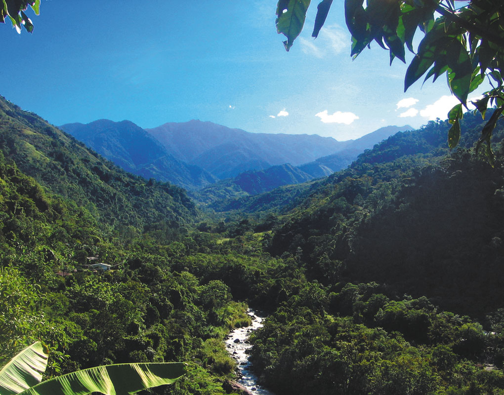 Nature connection retreat in Costa Rica February 2016