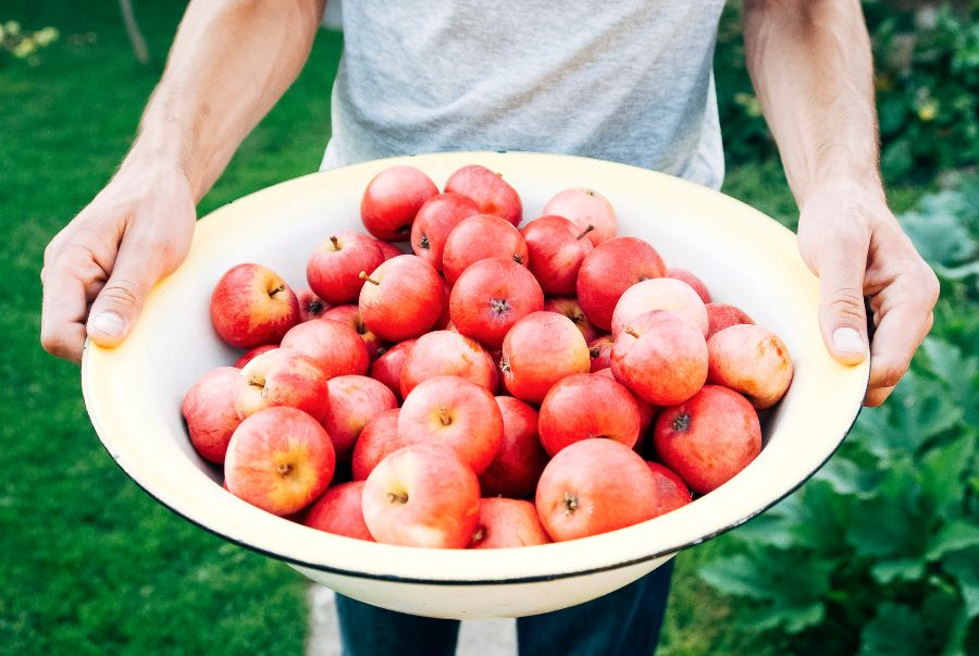 5 Ways to Say Good-Bye to Summer (and Hello to Fall) we are wildness 2 apples