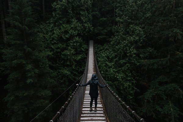 lynn canyon vancouver canada we are wildness blog