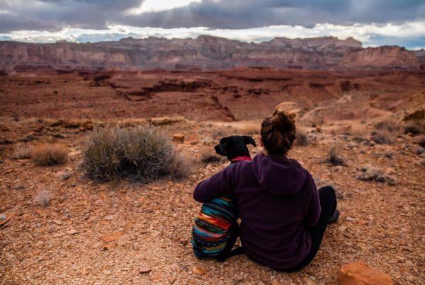 4 Reasons to Rewild Your Life - we are wildness - wearewildness - rewildyourlife - 30 day challenge program