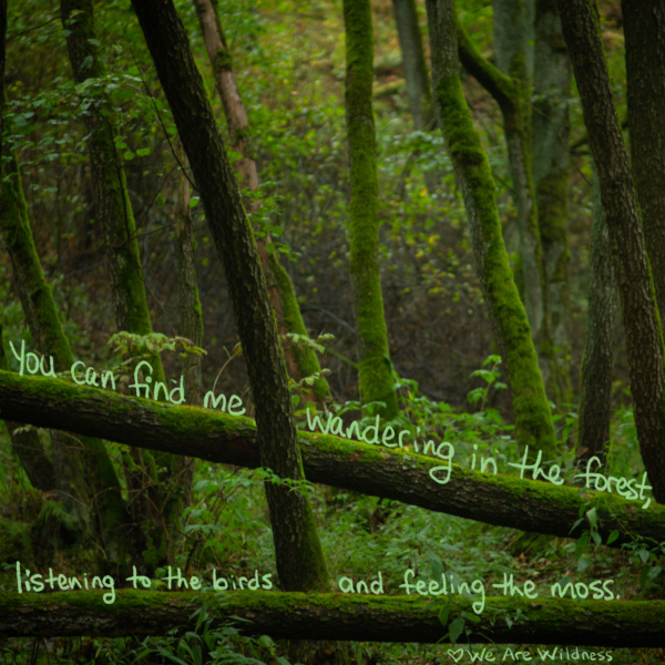 you can find me wandering in the forest - wearewildness - we are wildness